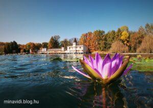 Hévízi-tó