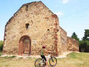 biciklivel révfülöp